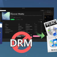 Sidify Music Converter for Spotify Review - How does Sidify Work?